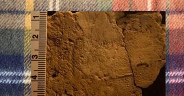 В Шотландии нашли следы текстиля времен неолита