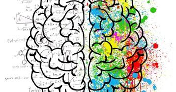 Представления о речевых функциях мозга оказались ошибочны