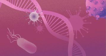 Почему вирусы так важны для эволюции?