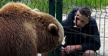 В Твери подросток плюнул в морду медведю Мансуру
