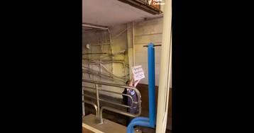 В Минске из-за протестующего перекрыли синюю ветку метро