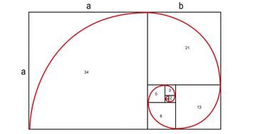 Числа Фибоначчи: что это, кто открыл и где применимо. Число Фибоначчи в науке и искусстве