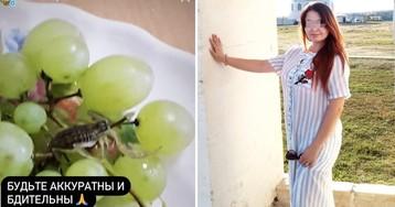 Девушку укусил скорпион, спрятавшийся в винограде из супермаркета