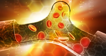 Тромбоциты: что это, строение и функции клеток, норма и отклонение