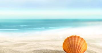 Американец нашел на пляже 35 килограммов кокаина