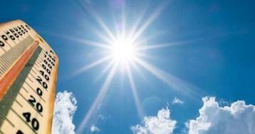 Неделя будет теплой, заморозки отойдут: прогноз погоды в Запорожье