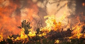 В Запорожской области спасатели тушили 154 пожара на открытой местности