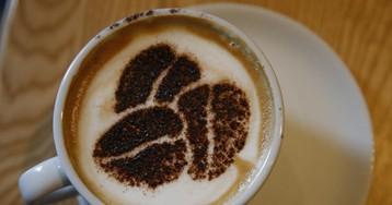 Кофе и воспаление: как ароматный напиток влияет на организм