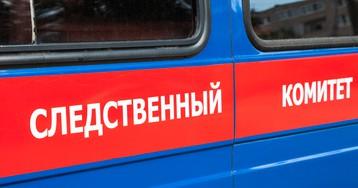 """РИА ФАН подало жалобу в СК на статью """"Медузы"""" о коронавирусе"""