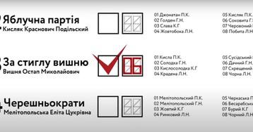Запорожцам на заметку: ОПОРА показала, как правильно заполнять бюллетени 25 октября, - ВИДЕО