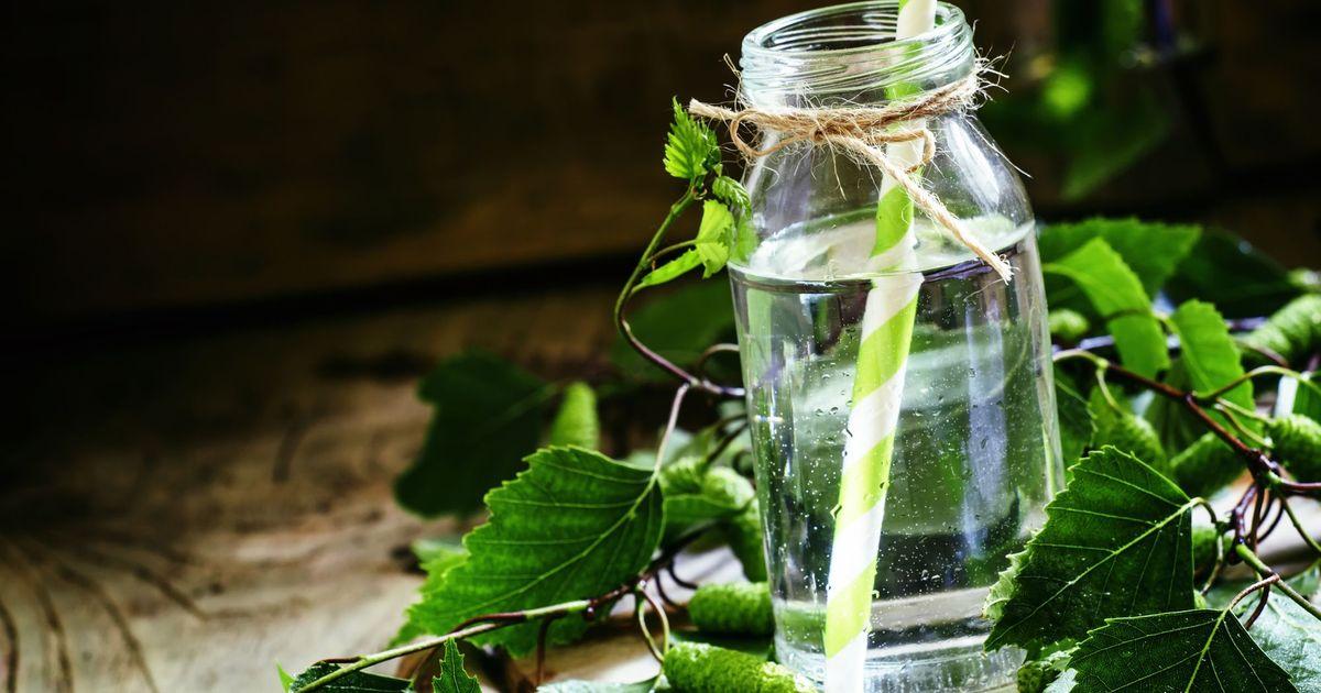 Фото Весенний рецепт консервации березового сока