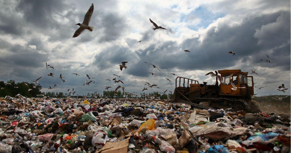 Фото Минфин России хочет ввести экологический налог. Кто будет его платить?