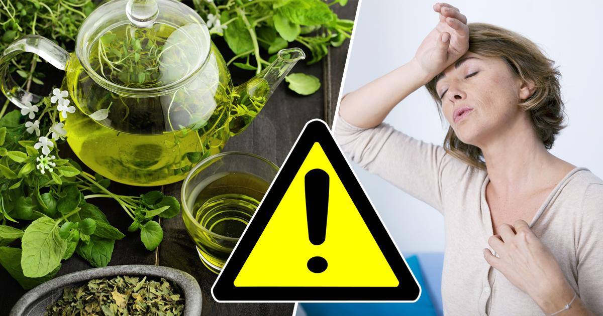Фото Побочные эффекты: чем зеленый чай опасен для здоровья