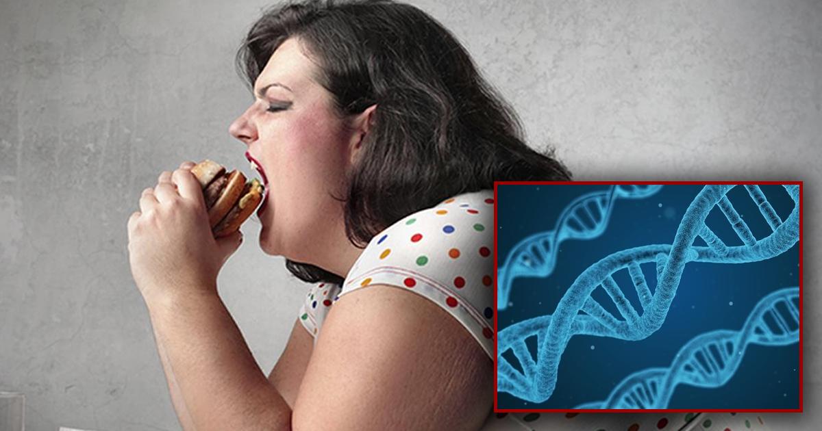 Фото Можно есть, сколько хочешь: ученые рассказали о главной причине ожирения