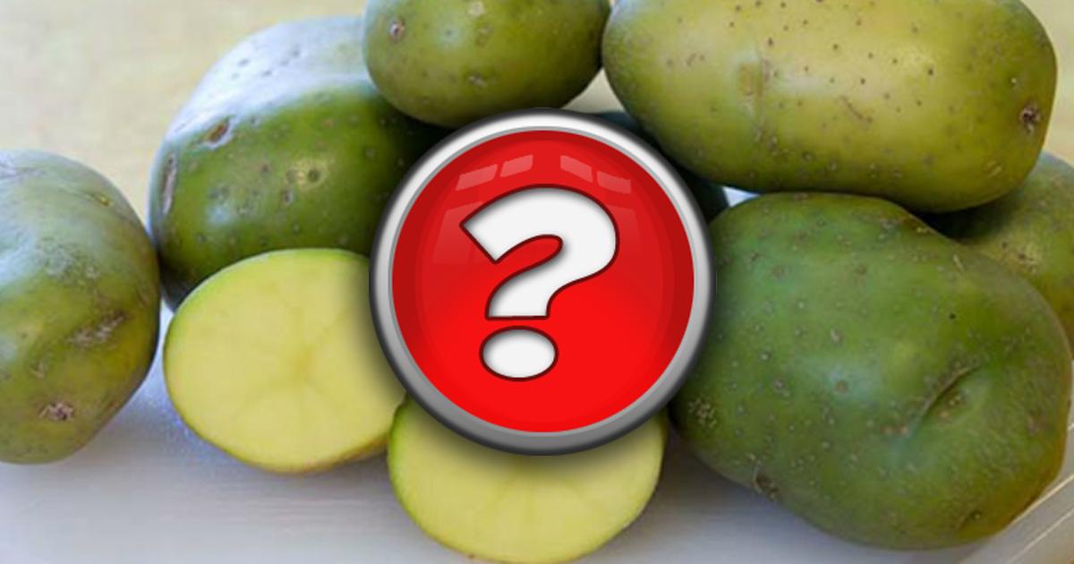 Фото От тошноты до комы: почему нельзя есть зеленый картофель?
