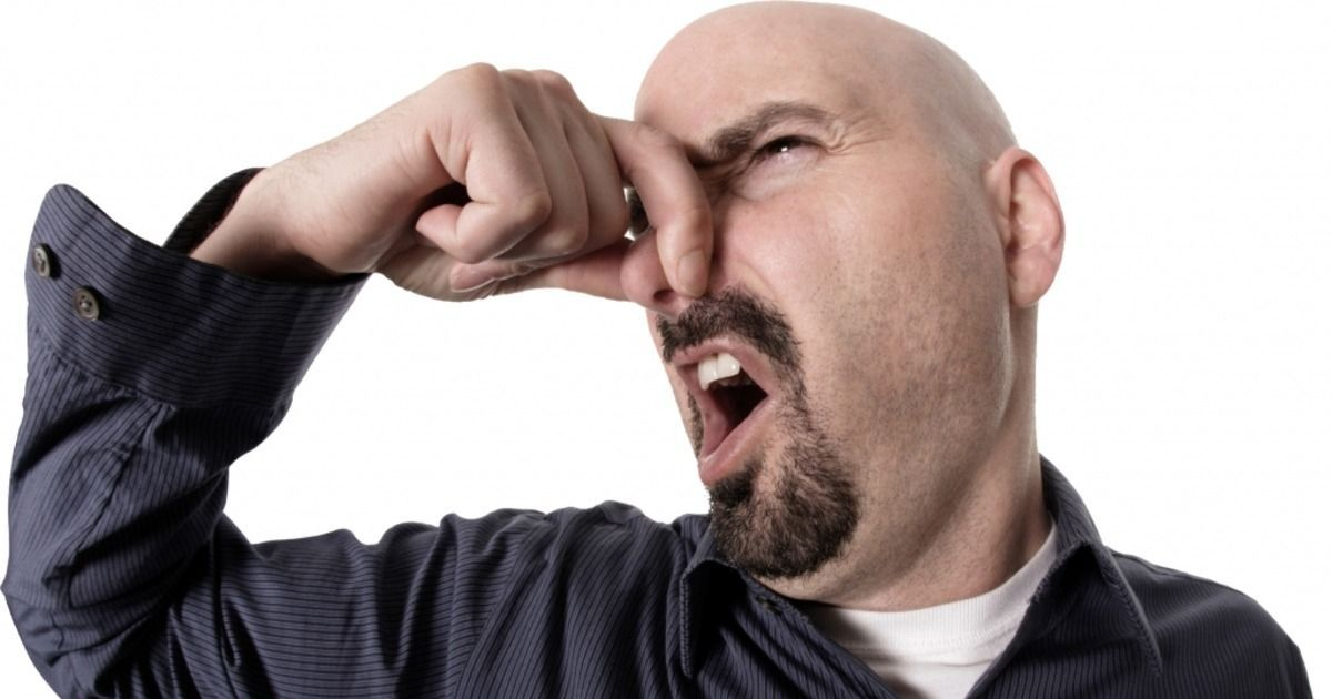 Фото Как запахи влияют на наше восприятие мира и о чем могут предупредить