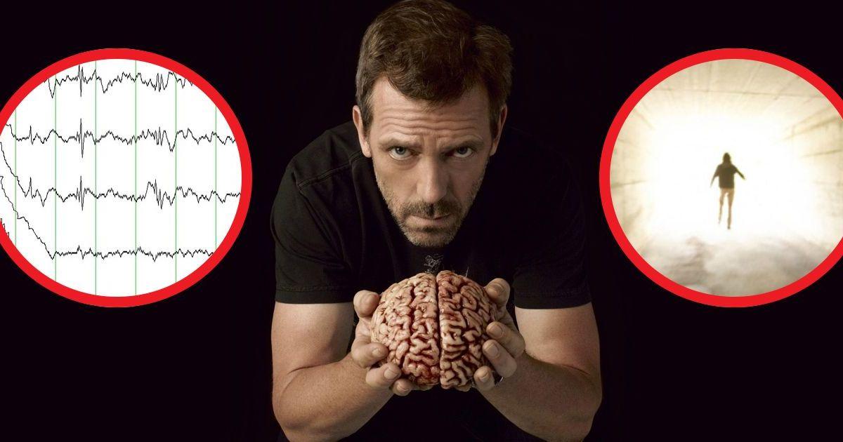 Фото Эффект NDE: что происходит с мозгом во время смерти? Выводы ученых