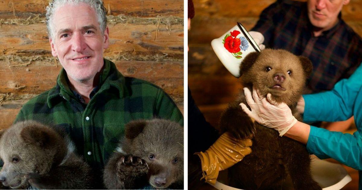 """Фото """"Мама"""" маленьких гризли: мужчина рассказывает, как он заботился о медвежатах"""