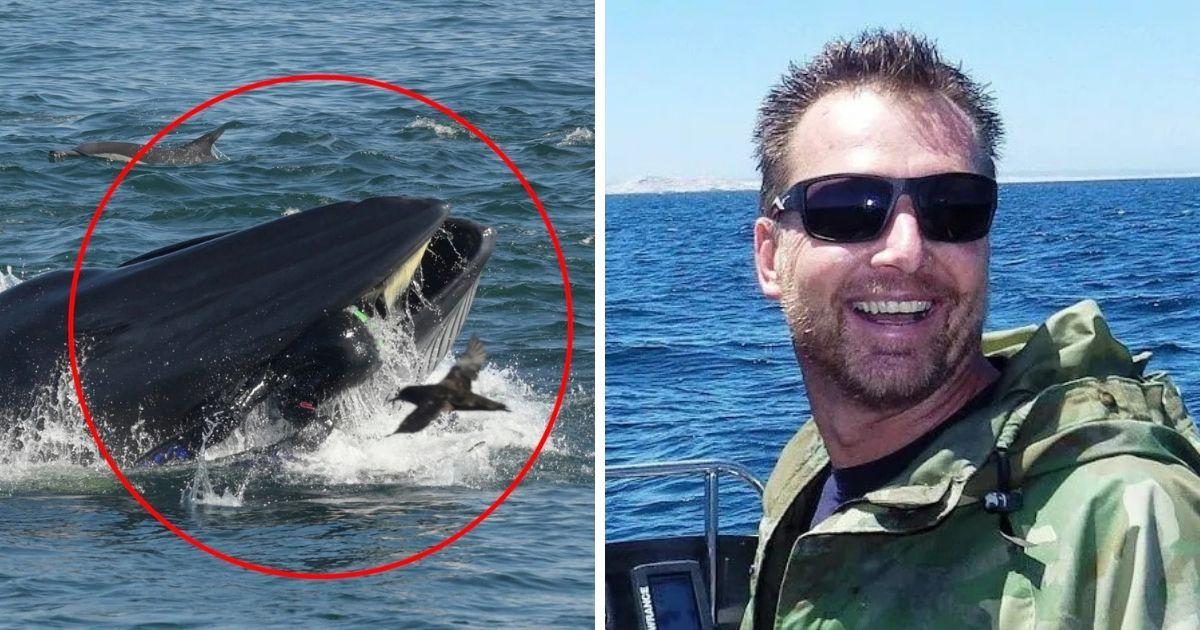 """Фото """"Стало темно"""": дайвера из Африки проглотил и выплюнул кит"""