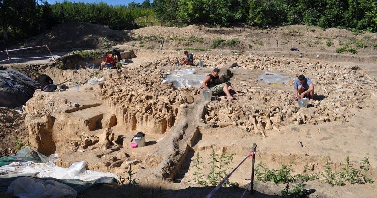 Фото Круг из 60 мамонтов найден вКостёнках
