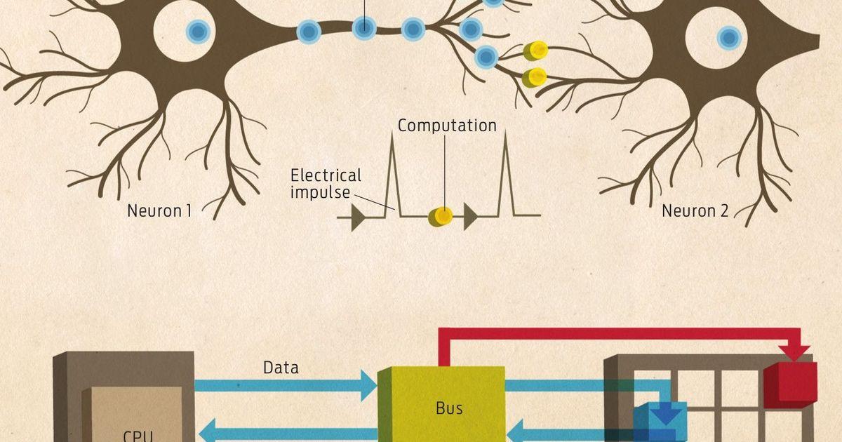 Фото Intel масштабирует сеть нейроморфных вычислений до 100 миллионов нейронов