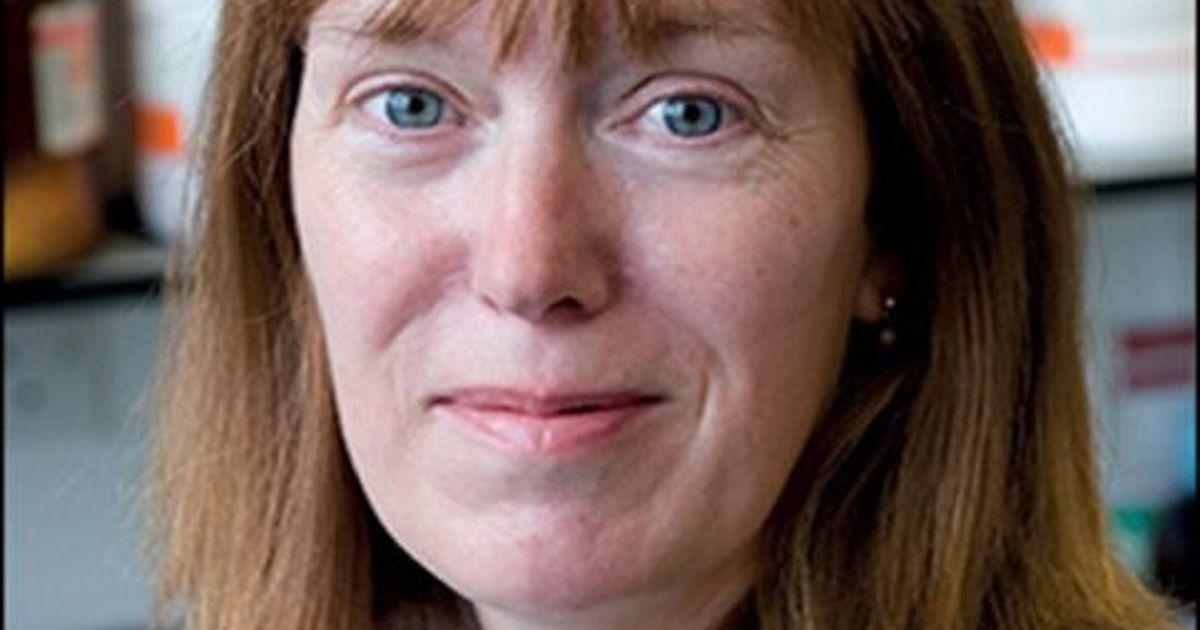 Фото Британия начинает испытания прививки от нового коронавируса налюдях