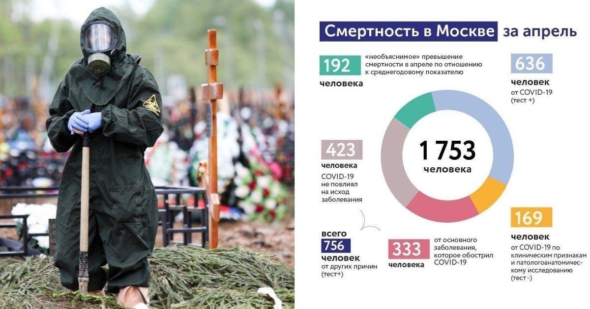 Фото Мэрия раскрыла детальную статистику смepтности от коронавируса в Москве