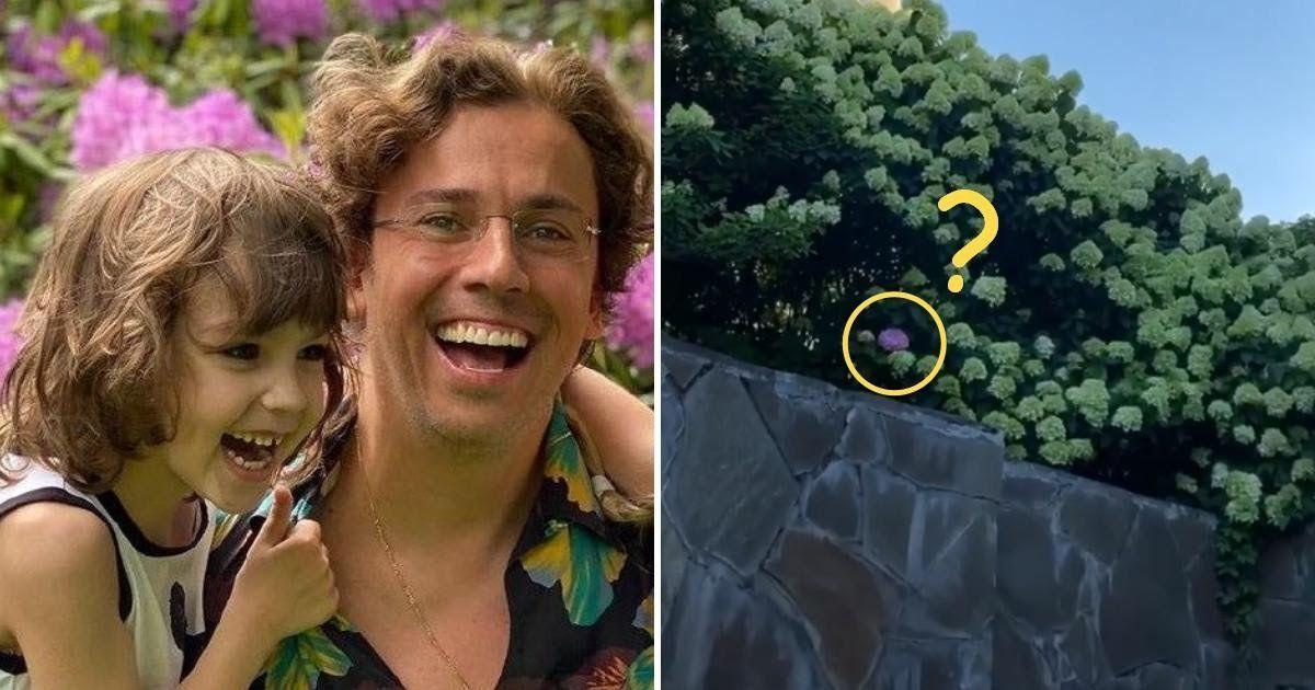 """Фото """"Гарри заметил"""". Галкин похвастался """"чудом"""" в саду возле своего замка"""