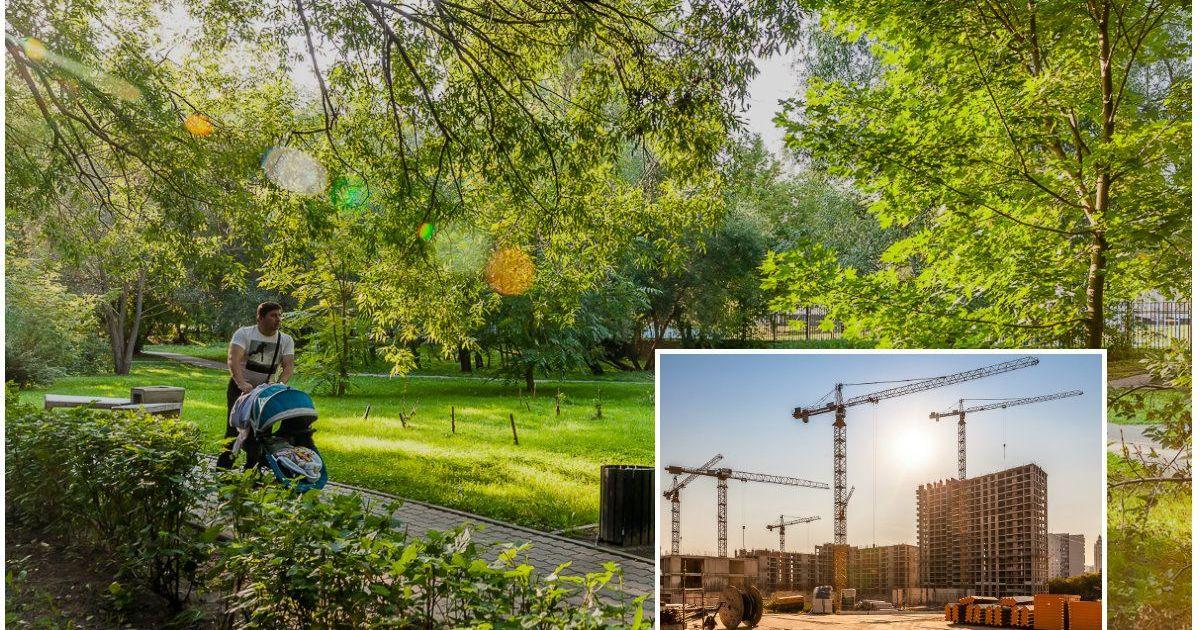 Фото Где в Москве жить хорошо? Как совместить лес, рыбалку и природу с жизнью в городе