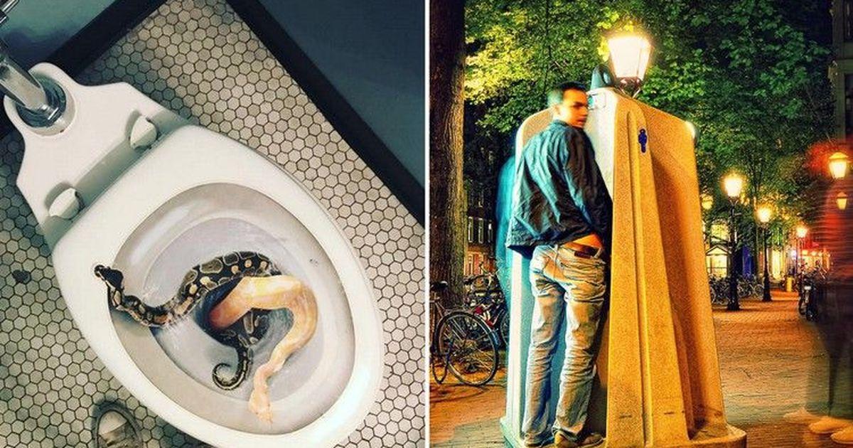Фото Туалеты в разных странах мира, способные потрясти