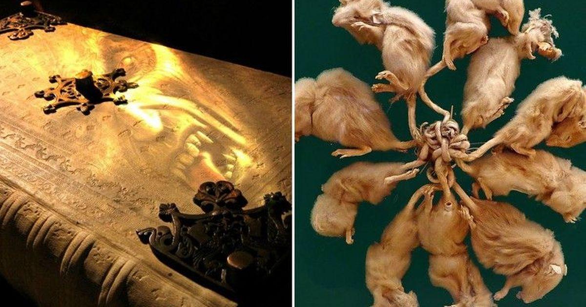 Фото Загадочные артефакты, чье происхождение не могут объяснить даже ученые