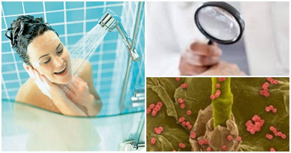 Фото Ученые предупреждают: чем грозит ежедневный душ