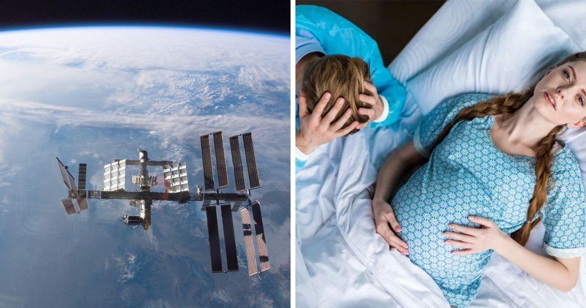 Фото Первые роды в космосе запланированы на 2024 год