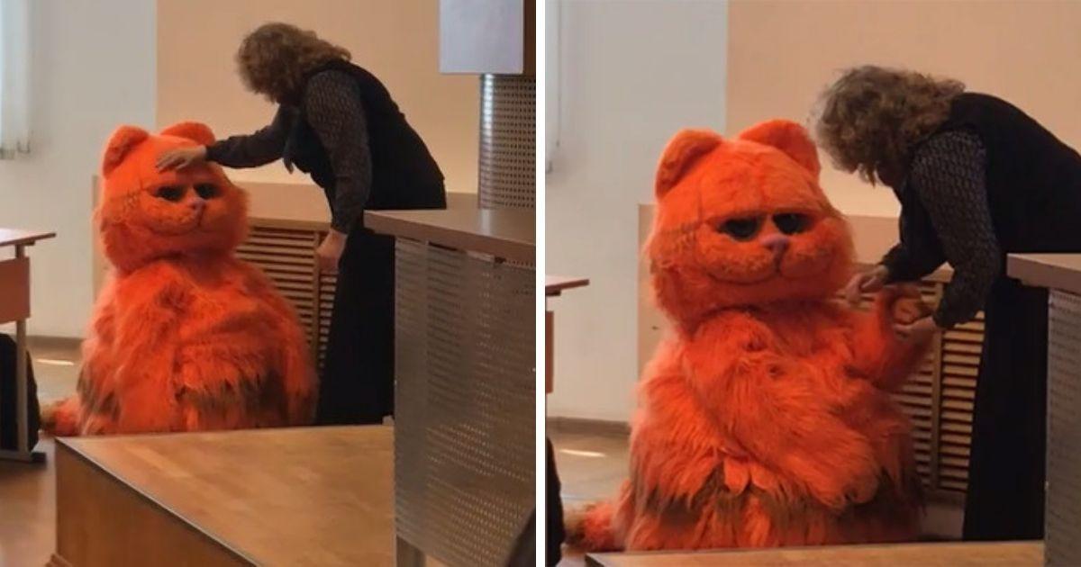 Фото Преподаватель ставит зачеты, потому что любит котов