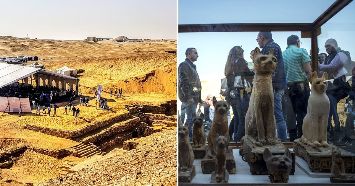 Фото Находка десятилетия. В Египте раскопали целый мумифицированный зоопарк