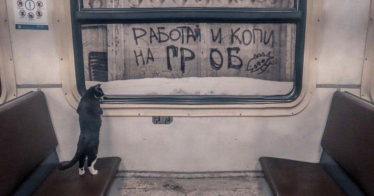 Фото Экзистенциальный кризис - что это такое и как с ним справиться?