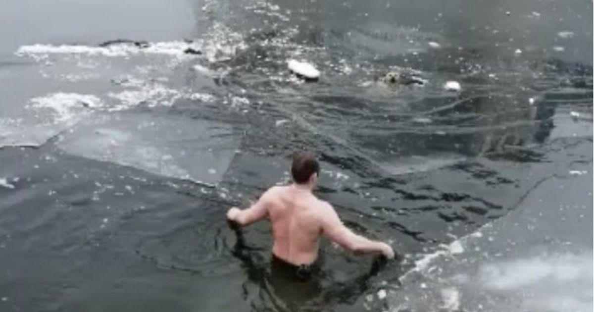 Фото Не прошел мимо. Астраханец залез в ледяную воду, спасая дворняжку