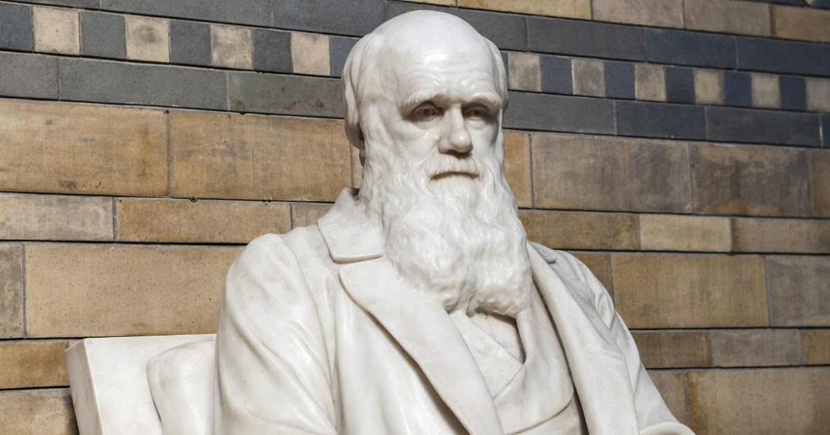 Фото Что такое естественный отбор? Как работает основной механизм эволюции?
