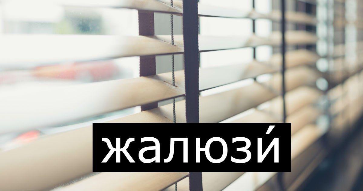 Фото Как ставить ударение в слове жалюзи: правильно жалюзИ или жАлюзи?