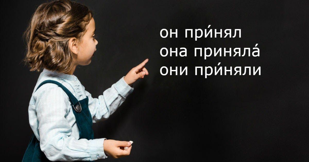 Фото Принята, принял, приму - как правильно поставить ударение? ПрИняли или принЯли?