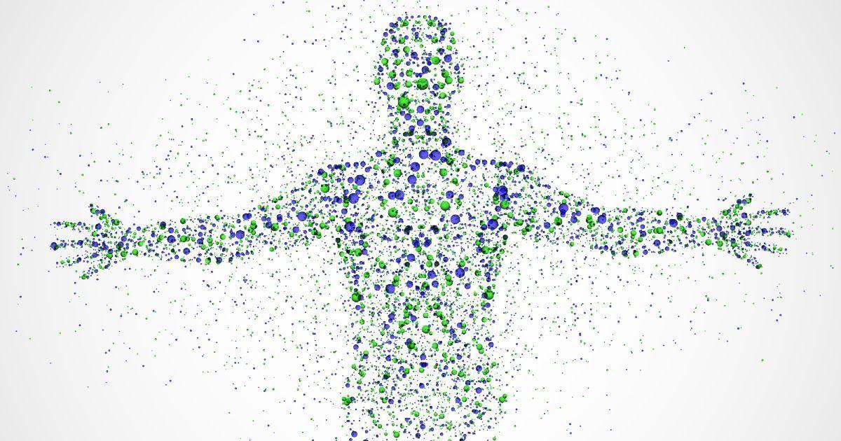 Фото Что такое клетка организма? Какое строение клетки? Какие виды клеток существуют?