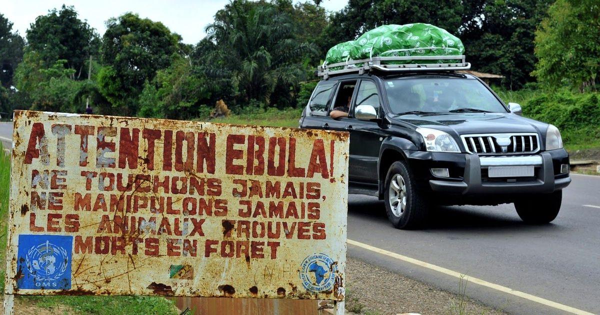 Фото Вирус Эбола: сколько людей умерло от лихорадки Эбола? Статистика и симптомы