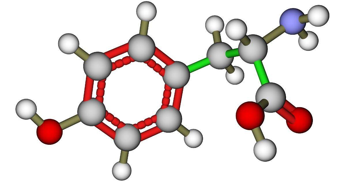 Фото Аминокислоты: свойства, состав и группы аминокислот. Функции аминокислот