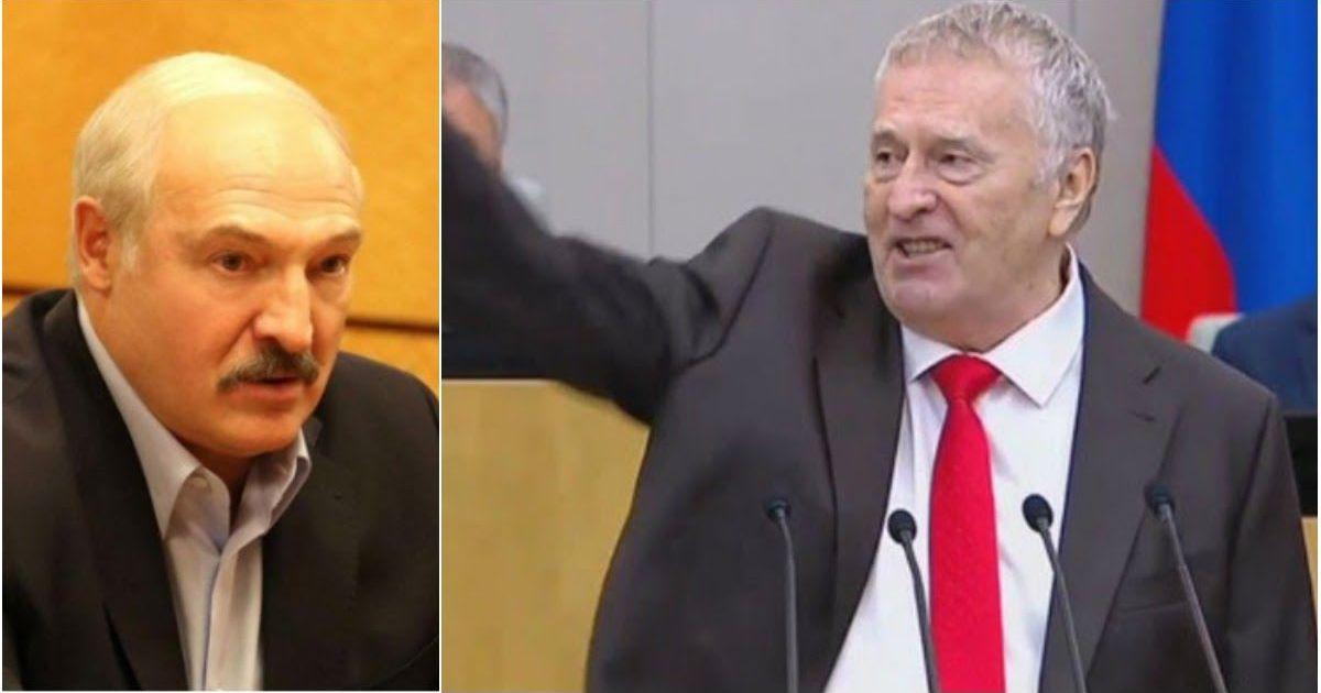 Фото Жириновский призвал Лукашенко сняться с выборов и уйти красиво