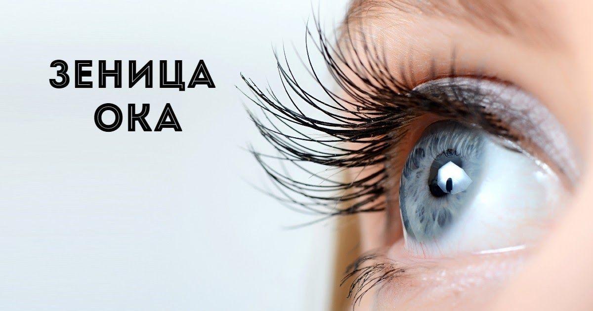 Фото Беречь как зеницу ока - что это значит? Откуда этот фразеологизм