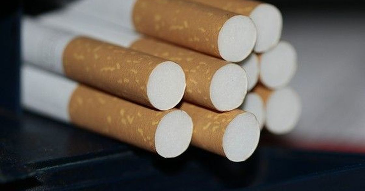 Фото Онищенко отверг идею бороться с курением среди школьников штрафами