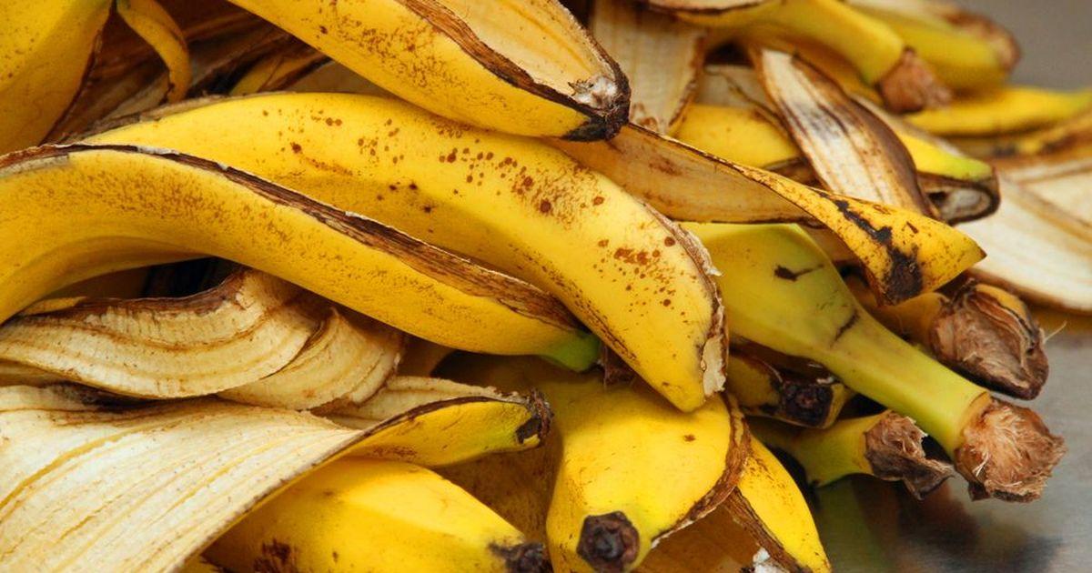 Фото Топливо из бананов и навоза научились получать в Африке