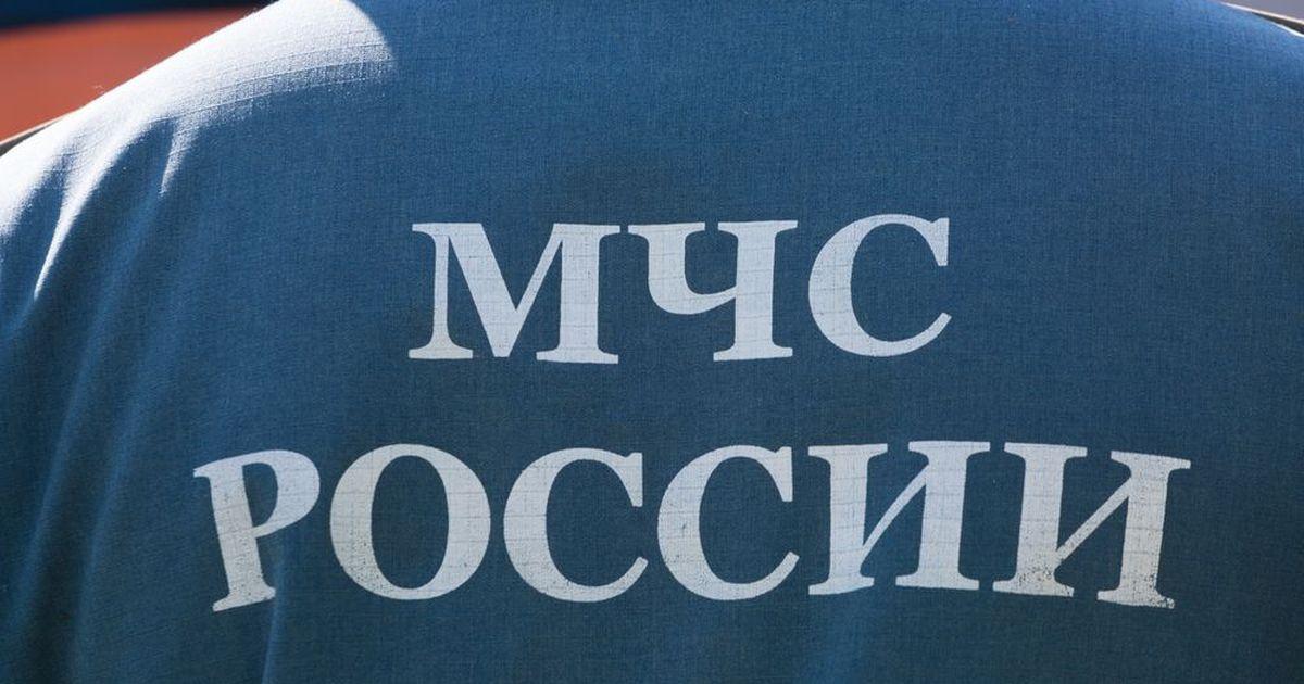 Фото МЧС Москвы переходит к режиму работы как при карантине
