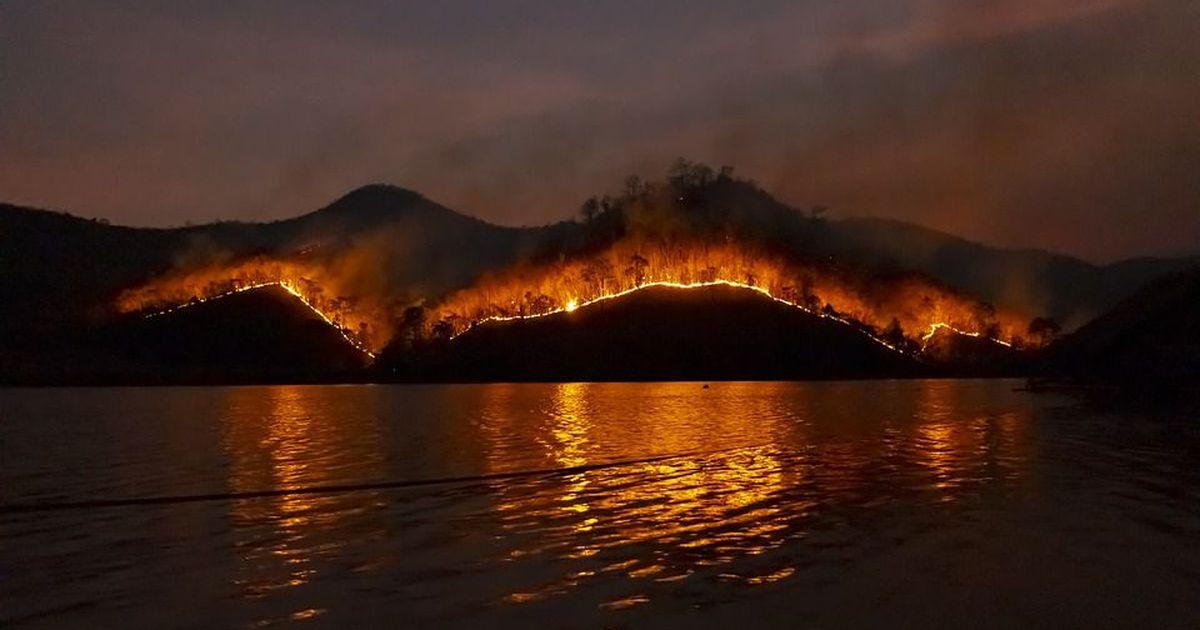 Фото В Калифорнии введен режим масштабного бедствия из-за пожаров