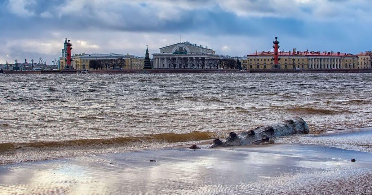 Фото Петербургу предрекли катастрофу из-за таяния арктических ледников